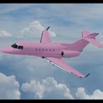 pembe özel uçak