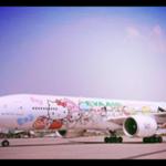 yolcu uçağı kiralama